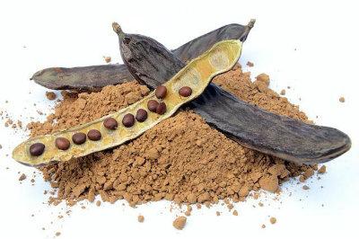 Bizcocho Vegano de Algarroba