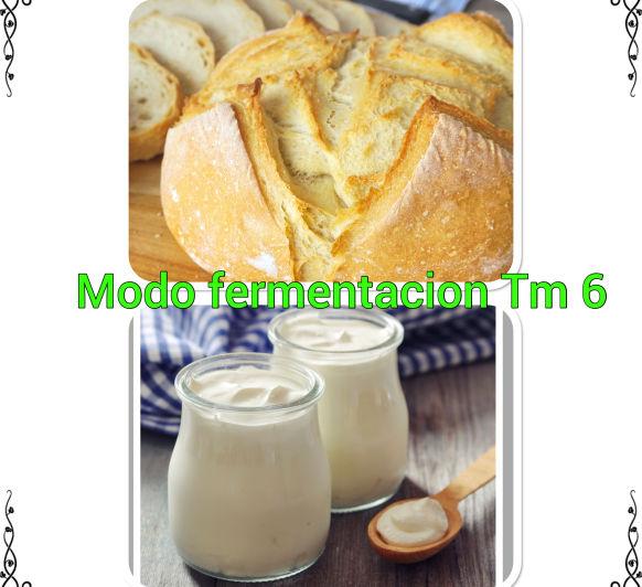 Descubre el modo fermentación del Tm 6